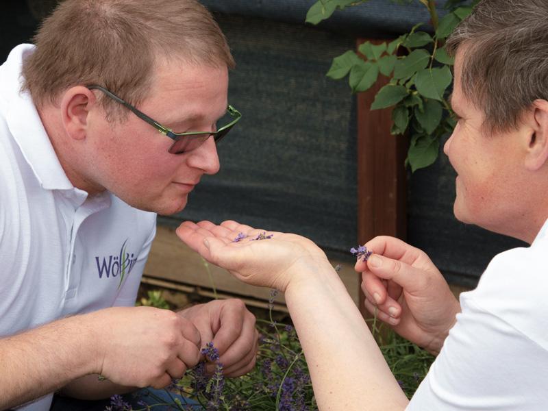 Wolfgang riecht an frisch gepflücktem Lavendel, den ihr Ingrid mit der Hand hin hält